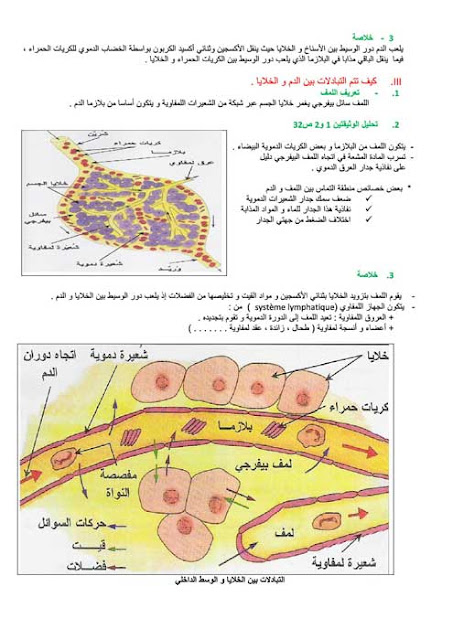 ملخص درس الدم والدوران الدموي علوم الحياة والارض لتلاميذ الثالثة إعدادي