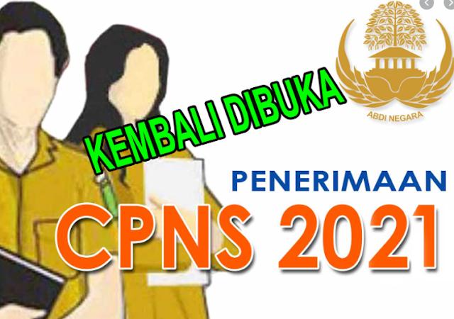 Formasi CPNS Dan P3k Kabupaten Padang Lawas/ Sibuhuan 2021
