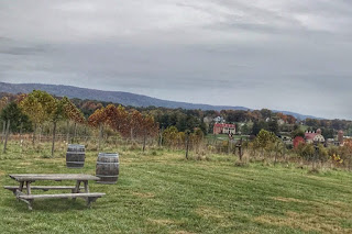 Autumn winery exploration