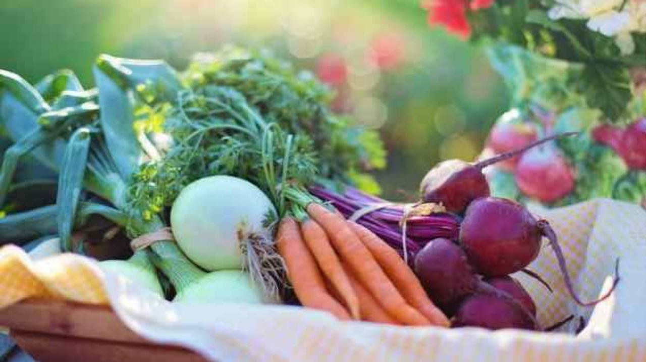 Manfaat dari Konsumsi Vitamin K, Dosis Hingga Efek Sampingnya