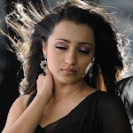 Trisha in  Black Saree  Photo Gallery