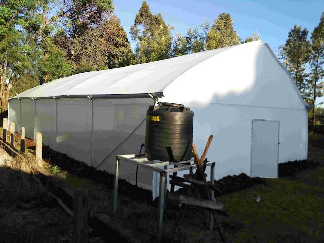 Metallic greenhouse in Kenya