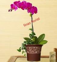 toko bunga rawa belong