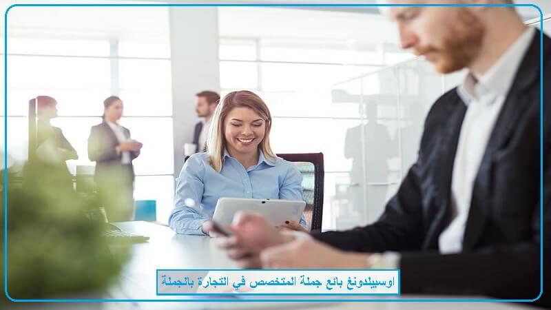 اوسبيلدونغ تجارة بالجملة Kauffrau im Großhandel في المانيا باللغة العربية