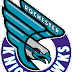 Knighthawks fall to Rush in Saskatchewan