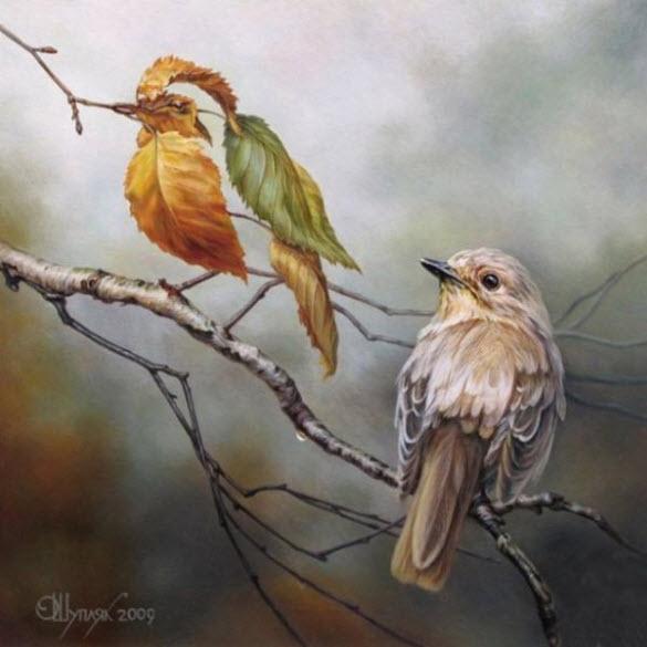 Pássaros - Oleg Shuplyak - Incríveis ilusões