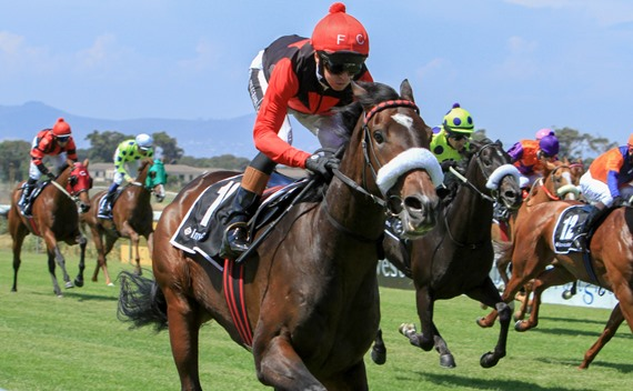 It's My Turn - Horse Racing - Vodacom Durban July - South Africa - Justin Snaith