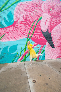 Best Chicago Murals and Walls Flamingo