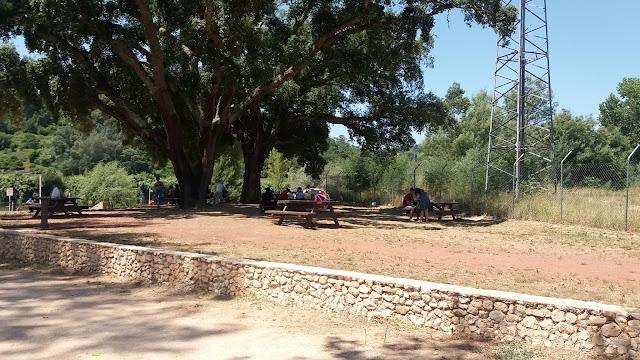 Parque de Pic Nic