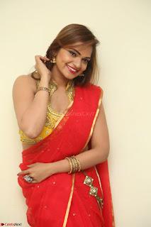 Actress Ashwini in Golden choli Red saree Spicy Pics ~  054.JPG