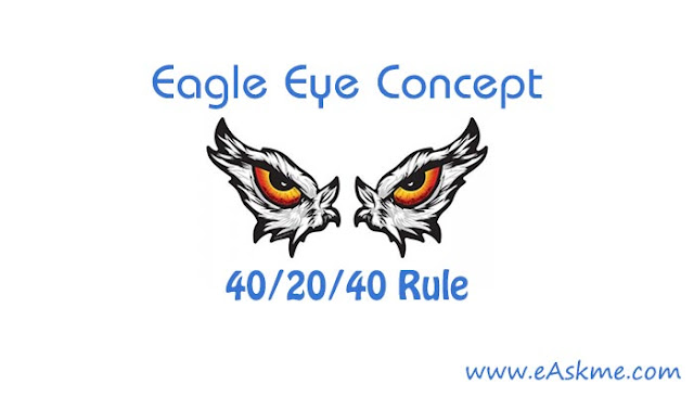 Eagle Eye Concept: Everything You Need to Know About Eagle Eye Rule : eAskme