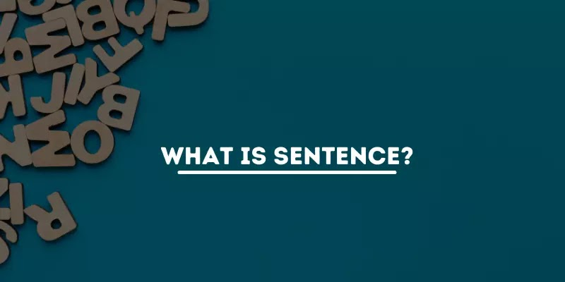 What Is Sentence? Definition & Types