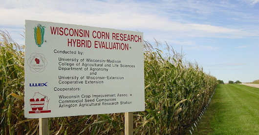 2016 Wisconsin Corn Hybrid Performance Trials