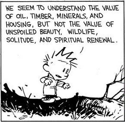 Understanding... Calvin and Hobbes