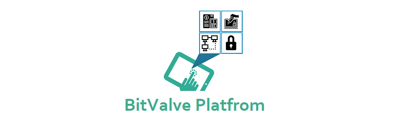 Key Advantages of BitValve Platform