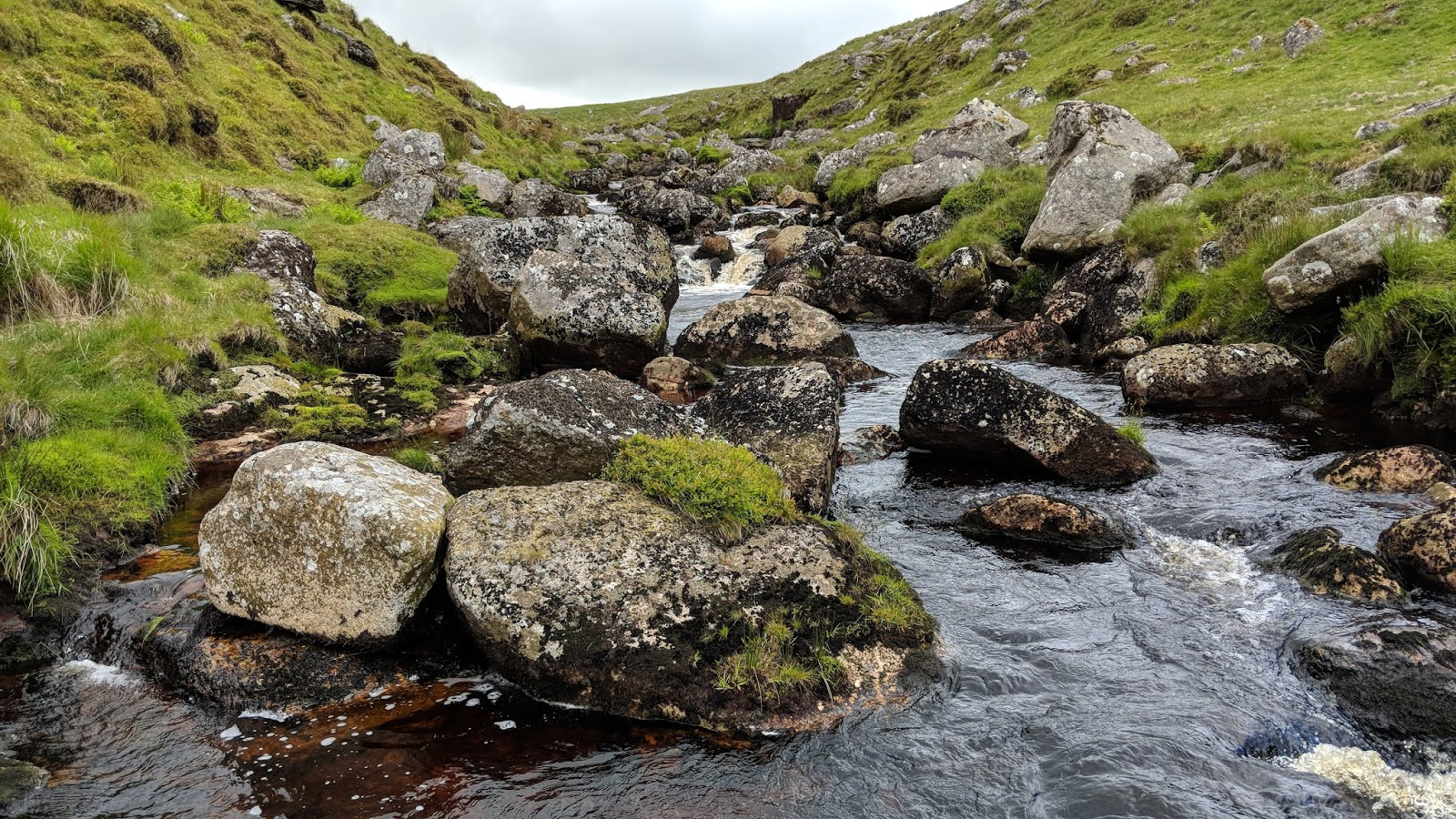 Tor Bagger: Dartmoor: Clearing up stragglers along the East Dart