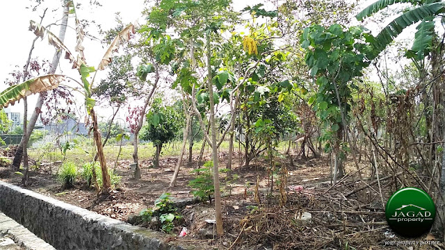Tanah dekat Hartono Mall Jogja