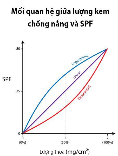 Trên thực tế, lượng kem chống nắng bạn bôi và SPF thực sự có mối quan hệ tuyến tính