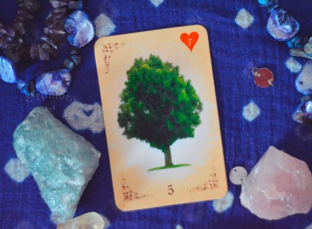 Saiba o significado da Carta 5 - A Árvore no Baralho Cigano ou Lenormand e combinações no amor, dinheiro e trabalho, obstáculo e conselho.