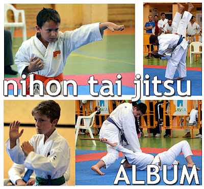 nihon tai jitsu Aranjuez
