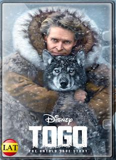 Togo (2019) DVDRIP LATINO