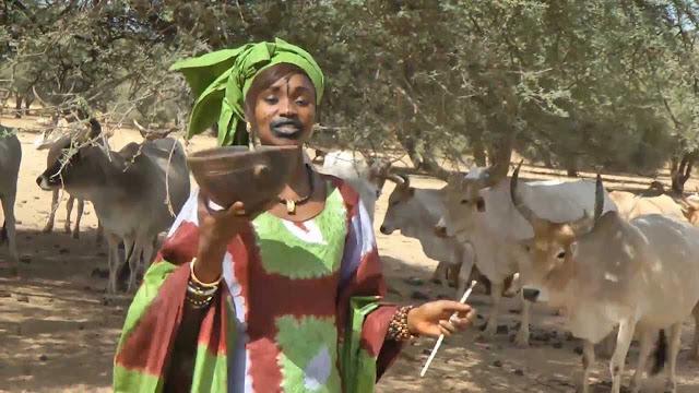 Tourisme, zone, visite, vacance, Fouta, Toro, environnement, nature, savane, histore, culture, tradition, Peuls, Toucouleurs, LEUKSENEGAL, Dakar, Sénégal, Afrique