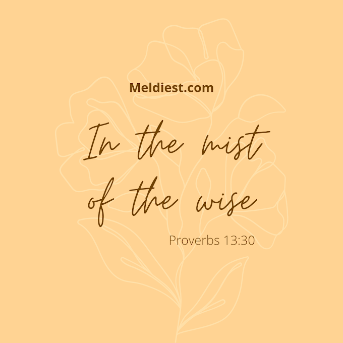 Among The Wise