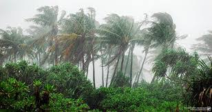 Four (4) general characteristics of tropical mansoon climate