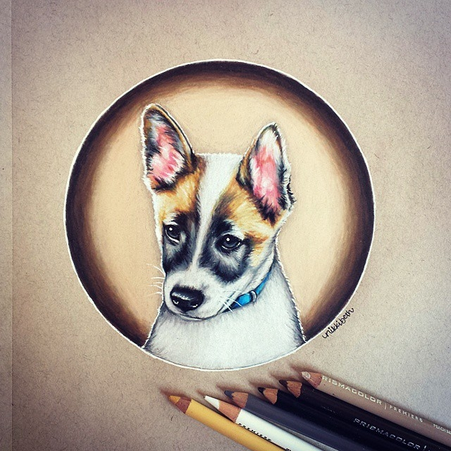 09-Cute-Little-Puppy-Nikki-Beth-Animal-Portrait-Drawings-in-different-Styles-www-designstack-co