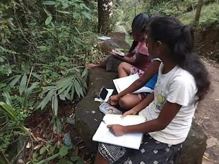 students in Baduraliya in Kalutara district of the Western Province difficultly catch signal to participate in an online lesson