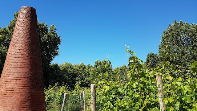 La vigne de Bercy