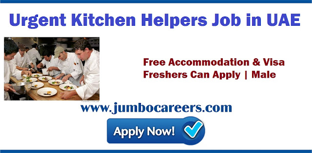 Urgent Kitchen Workers Job in Dubai