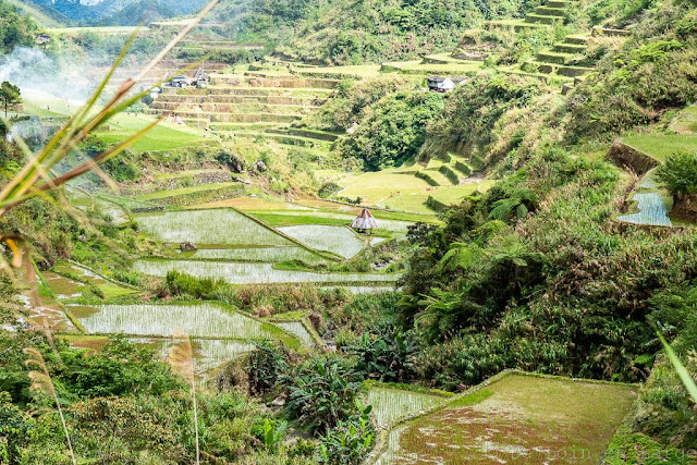 Patyay-Ifugao-Luçon-Philippines