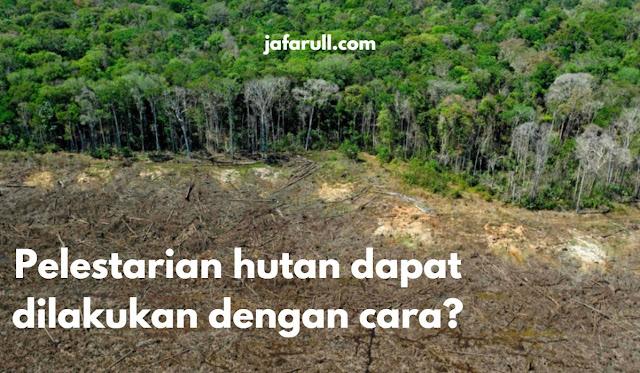 Pelestarian hutan dapat dilakukan dengan cara