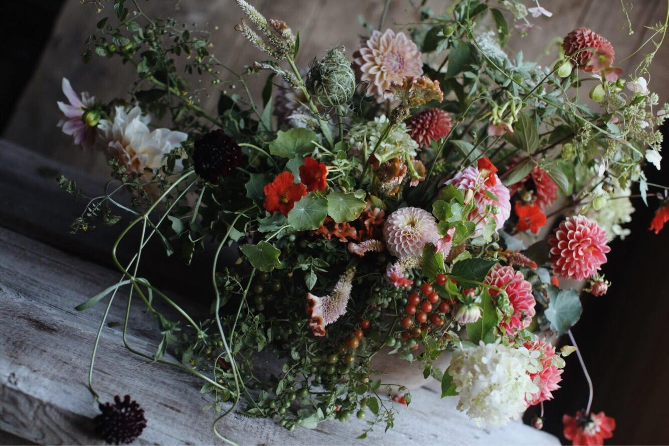 Beautiful Flowers 2019 Flower Shops In Marion Il Beautiful Flowers