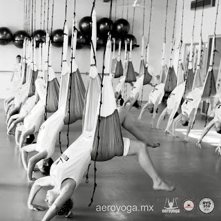 FOTO: RAFAEL MARTINEZ, FORMACION MAESTROS YOGA AEREO MEXICO, COLUMPIO, FLY, FLYING, TRAPEZE, BODY, AERIAL YOGA, PILATES AEREO, WORK, TEACHER TRAINING