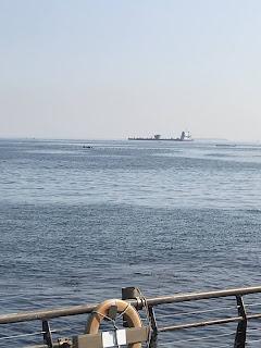 馬堀海岸沖のタンカー