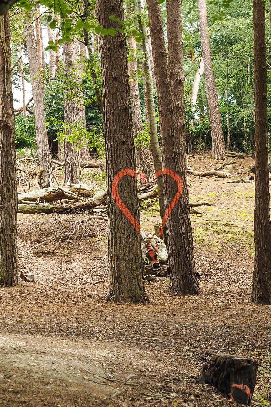 Heart art trail on Brownsea Island