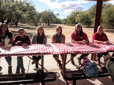 A group of 5 woman and 2 man sitting at table with a red and white checked tablecloth. There are trees and clouds in the background.