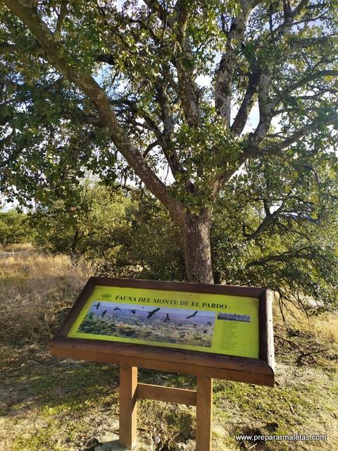 paneles informativos en el Monte de El Pardo