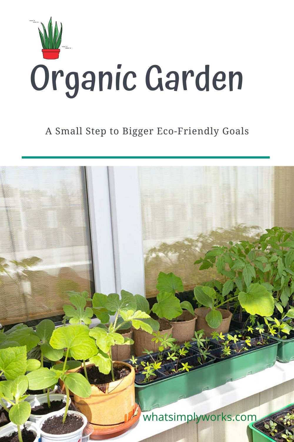 Organic Garden: A Small Step to Bigger Eco-Friendly Goals