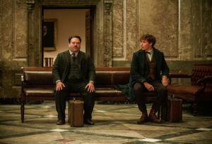 Review Dan Sinopsis Film Fantastic Beasts And Where To Find Them 2016 Ratutips