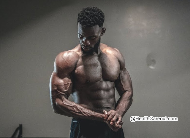 How to increase the size of the muscles healthcareout.com