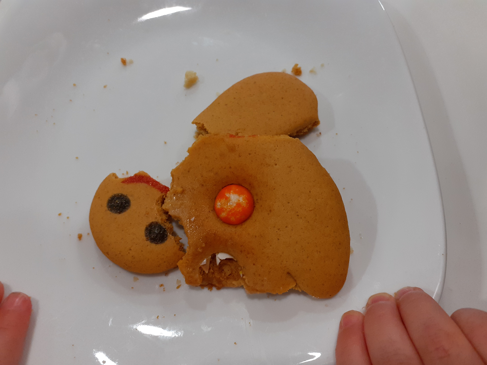 Bits of gingerbread man