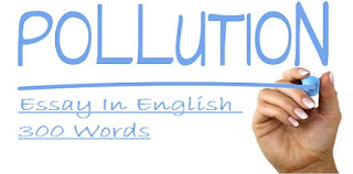 Pollution Essay In English