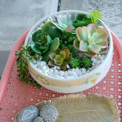 Vintage Dish Succulent Planter - 7 Days of Thrift Shop Flips - Day Four