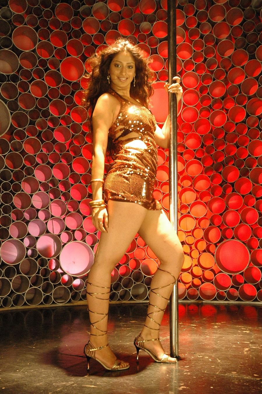 Actress lakshmi rai cameltoe - 5 4