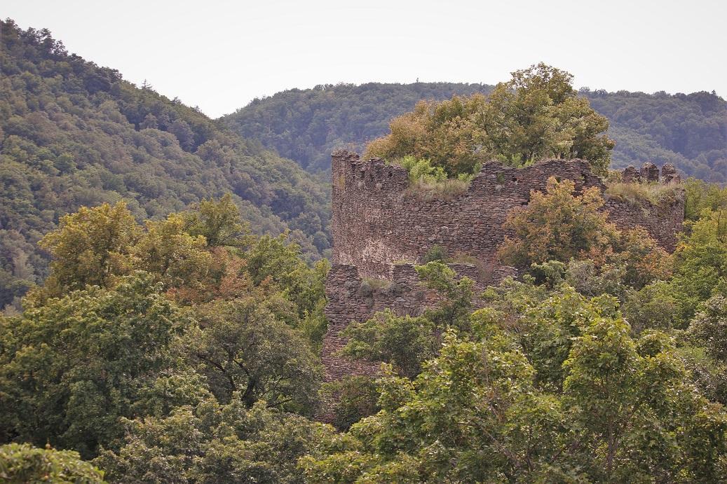 zřícenina hradu Nový Hrádek u Lukova v Národním parku Podyjí