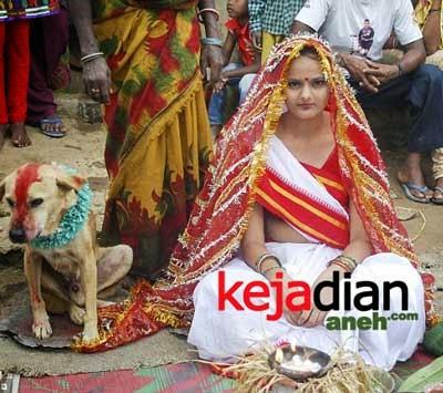 Ritual Perkawinan Dengan Hewan di India
