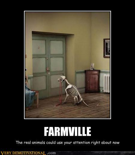 Picture Gallery: funny quotes dog pictures dog jokes cat ...